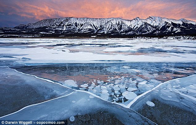 Two-fold: There are methane-producing lakes like Lake Abraham all over the globe and researchers believe they may, themselves, compound global warming as more lakes melt and release methane