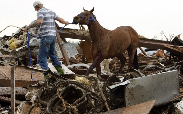 Rescuers recover a horse from the remains of a day care center and destroyed barns