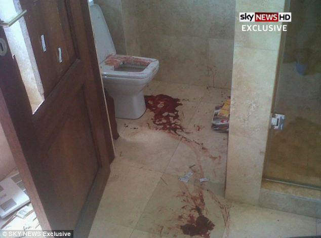 Graphic pictures obtained by Sky News show for the first time the bathroom where Reeva Steenkamp was shot dead by Paralympian Oscar Pistorius