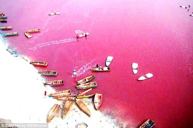 Lake Retba, in the Cap Vert peninsula of Senegal, has a high concentration of salt which is harvested by local people. The lake is also a tourist attraction