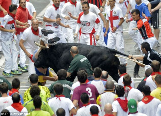 Frantic: A runner pulls on the tail of the bull in an attempt to distract it and make it drop the mauled man