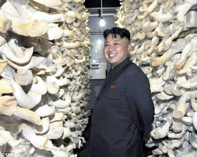 Grin: The North Korea leader smiles for the camera as he stands among walls of mushrooms