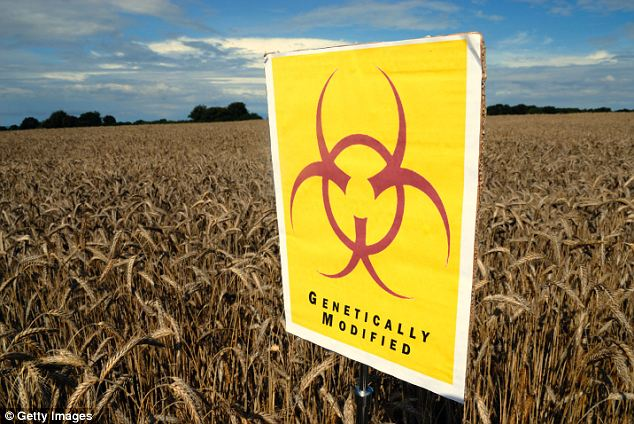 Biohazard: The public remains deeply suspicious of GM foods, with only just over a quarter indicating they support them despite efforts by Government claims that not using them will put British jobs at risk