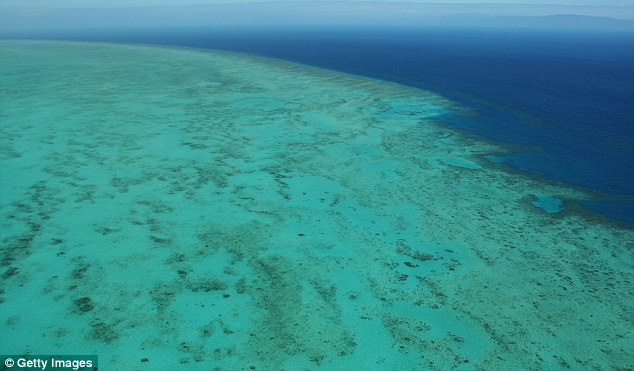 Protected: The bombs were dropped near the Great Barrier Reef, a UNESCO World Heritage Site