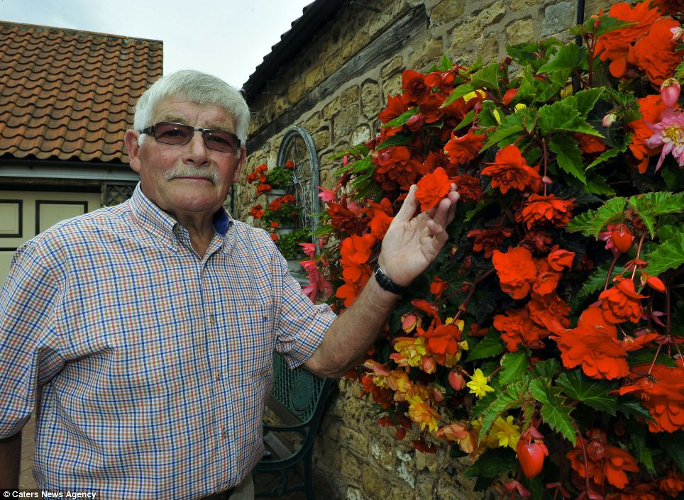 Mr Grindle is a former winner of the Doncaster In Bloom Best Garden competition