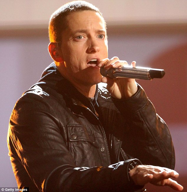 Gig: The incident took place on Saturday during a concert by American rapper Eminem