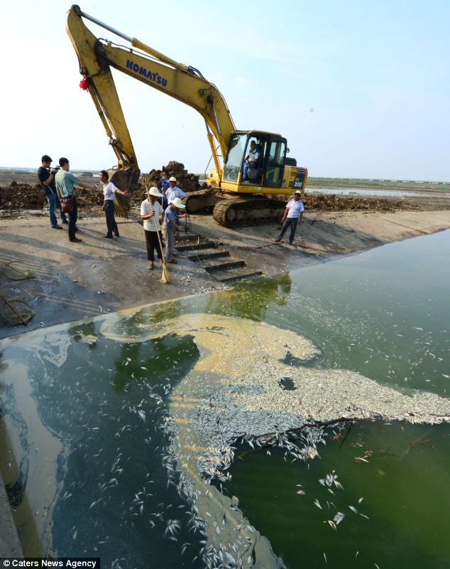 It is the latest pollution scandal to hit China and residents are suspicious about the safety of drinking water