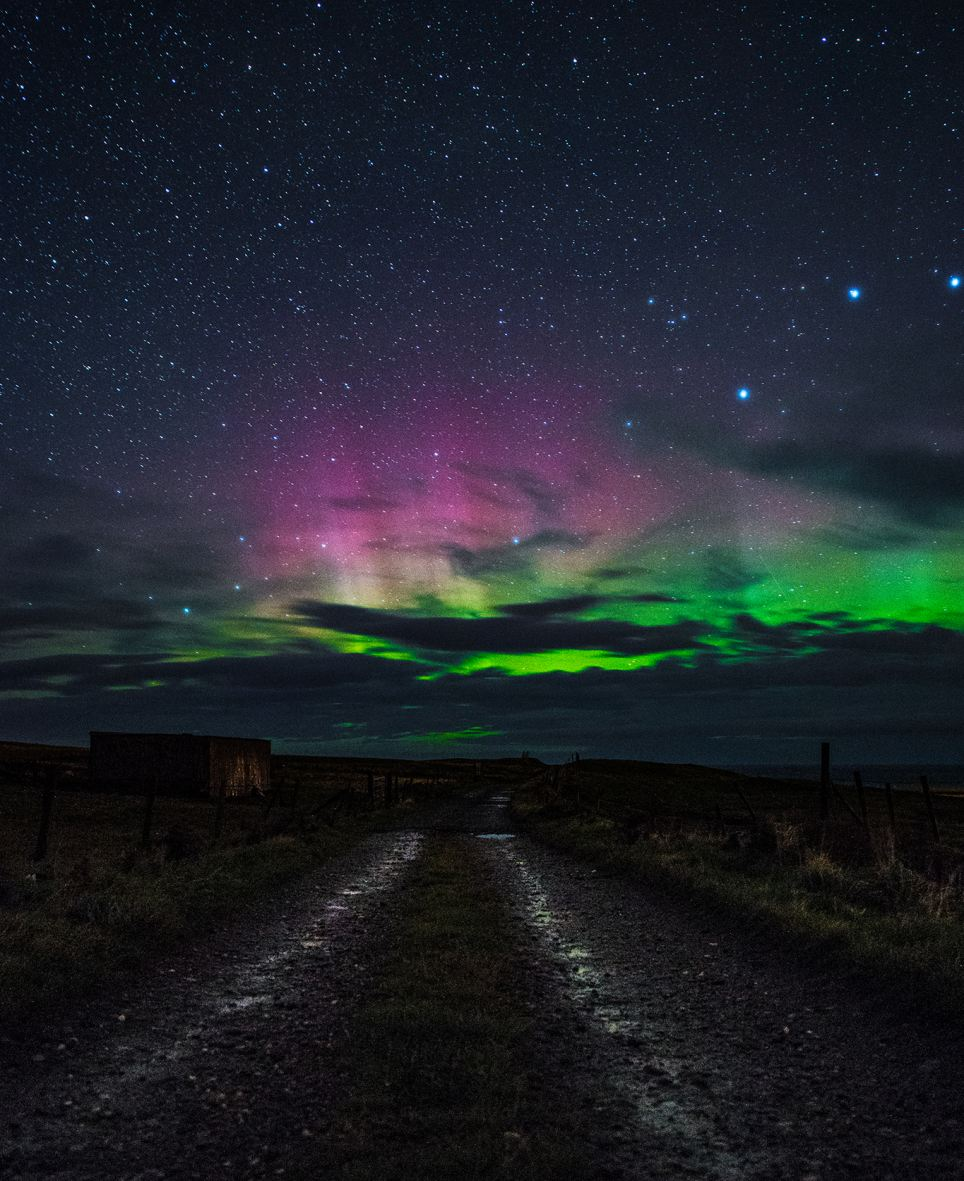 Northern Light Tonight