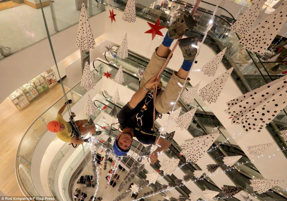 Christmas Trees Decorations 2013