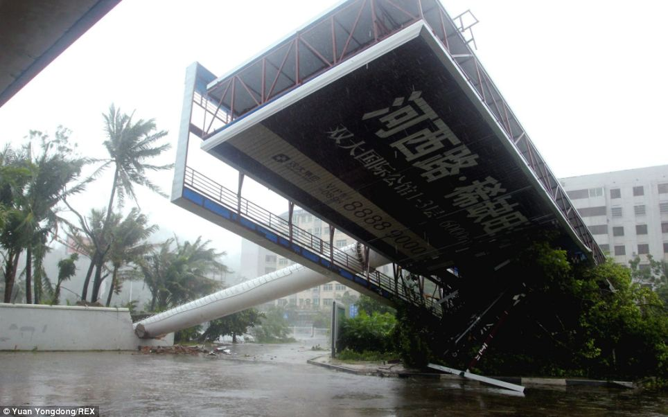 Heavy winds had already caused damage to China's Hainan island before the super typhoon made landfall this afternoon. Above, a billboard is blown over by the strong winds
