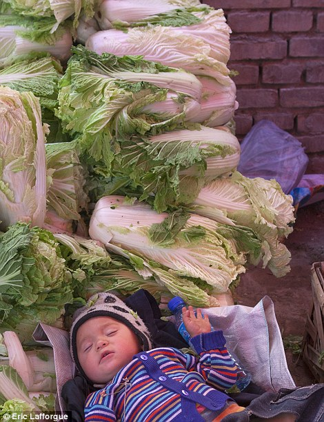 A baby asleep on a pile of cabbages in Yarkand