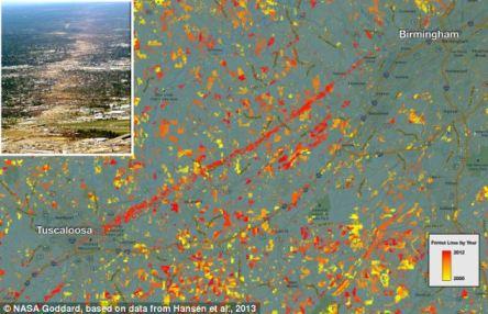 Los mapas de cobertura forestal también capturan perturbaciones naturales