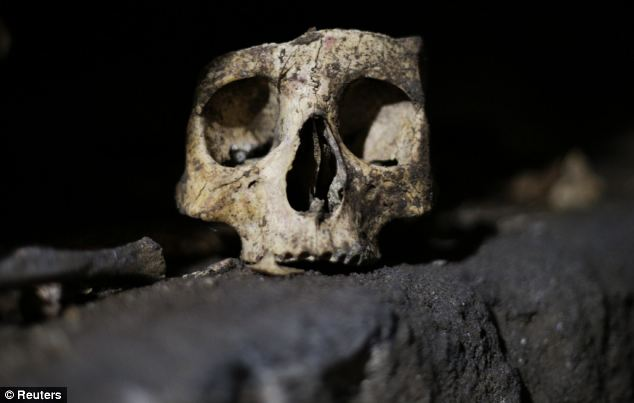 A skull is pictured inside the catacomb of Priscilla in Rome Novembe