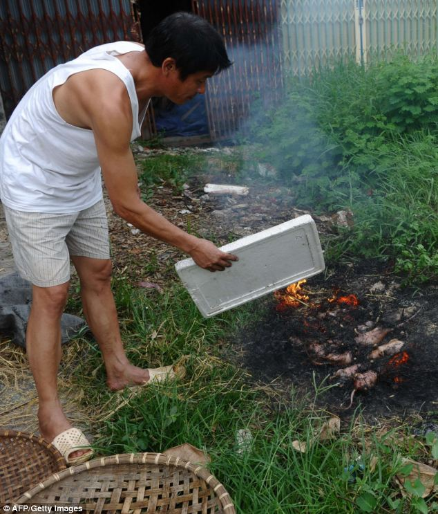 Barbecue: Thanh, owner of a rat restaurant, roasting rats