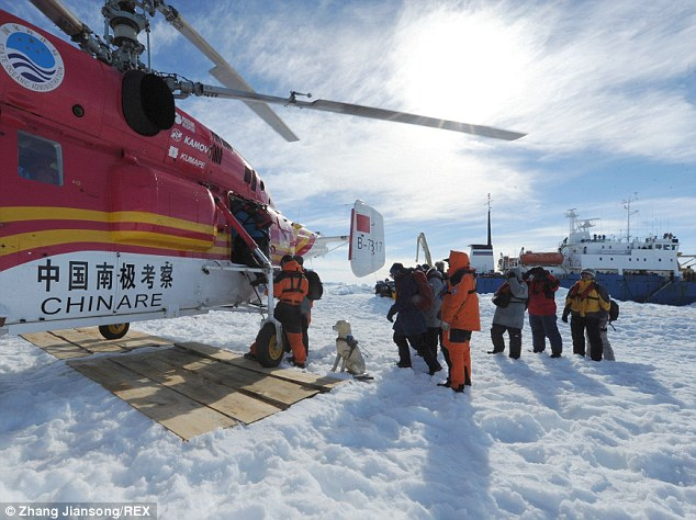 Rescue: The crew of the trapped Russian vessel MV Akademik Shokalskiy were airlifted from the Antarctic