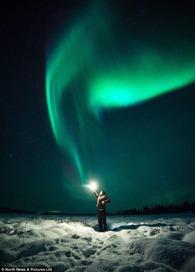 Northern Lights Co