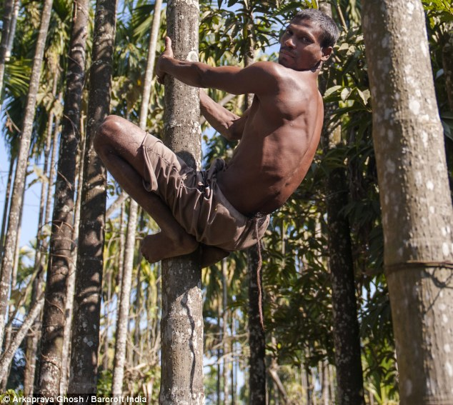 Monkey business: Chandre Oraon, 35, from West Bengal, has a 14.5inch tail, leading to locals believing that he is an incarnation of Hindu monkey deity Hanuman.