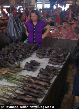 Roasted rats inside the Tomohon Traditional market in North Sulawesi, Indonesia