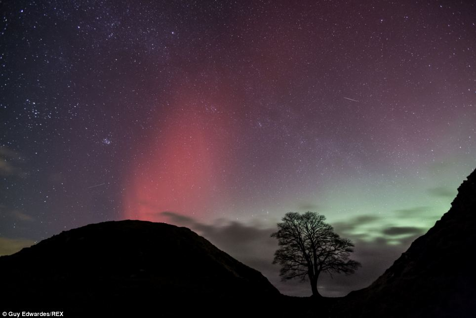 Mark Thompson told the BBC: 'The electronically charged particles take two or three days to get here' Above, the Northern Lights at Sycamore Gap, Hadrian's Wall