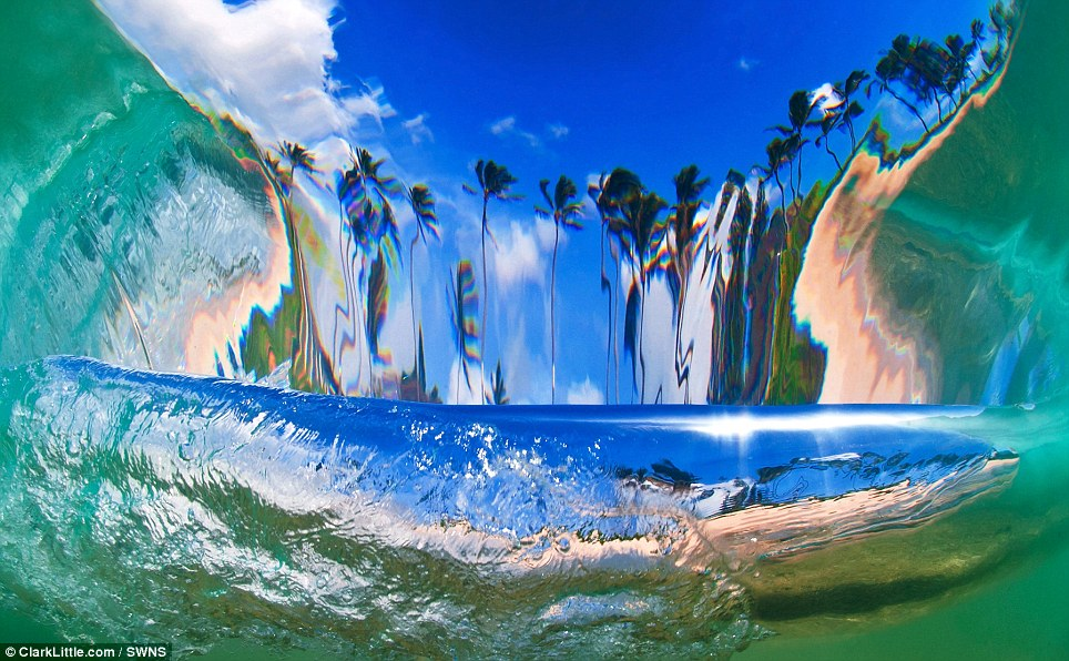 Pictured: a shot from behind a breaking wave looking towards shore. Here, the photographer is under water and the curve of the wave distorts the beach scene elongating the palm trees
