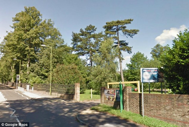 Upsetting scene: Police were called to Leavesden Country Park in Hertfordshire following reports of loose horses, and both were shot dead