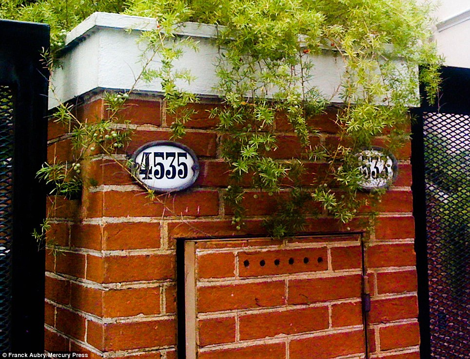 Home sweet home: This piece of brickwork between numbers 4535 and 4533 appears to have a face of its own