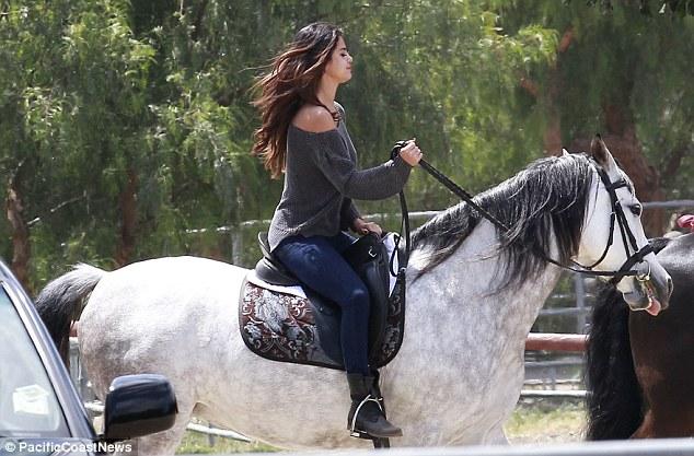 Horses Saddled Trail Ride