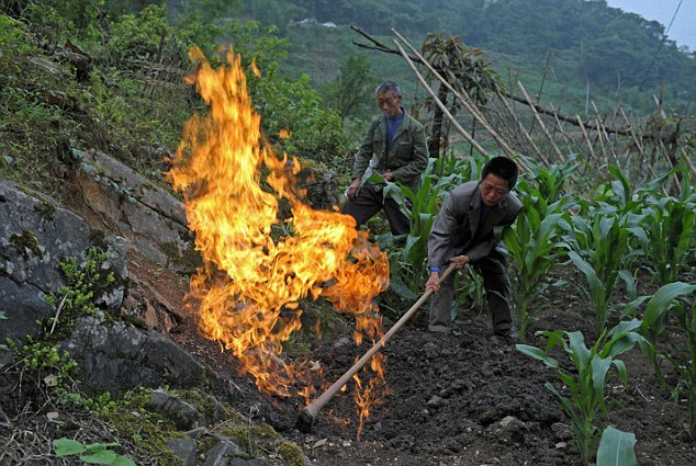 Dangerous: Methane gas is coming up from the ground in a village in China causing the air to burst into fire