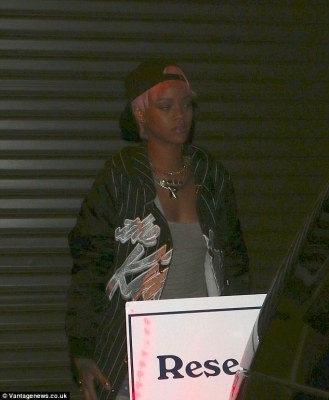 Ready to tour: Rihanna has also been auditioning dancers for her upcoming tour