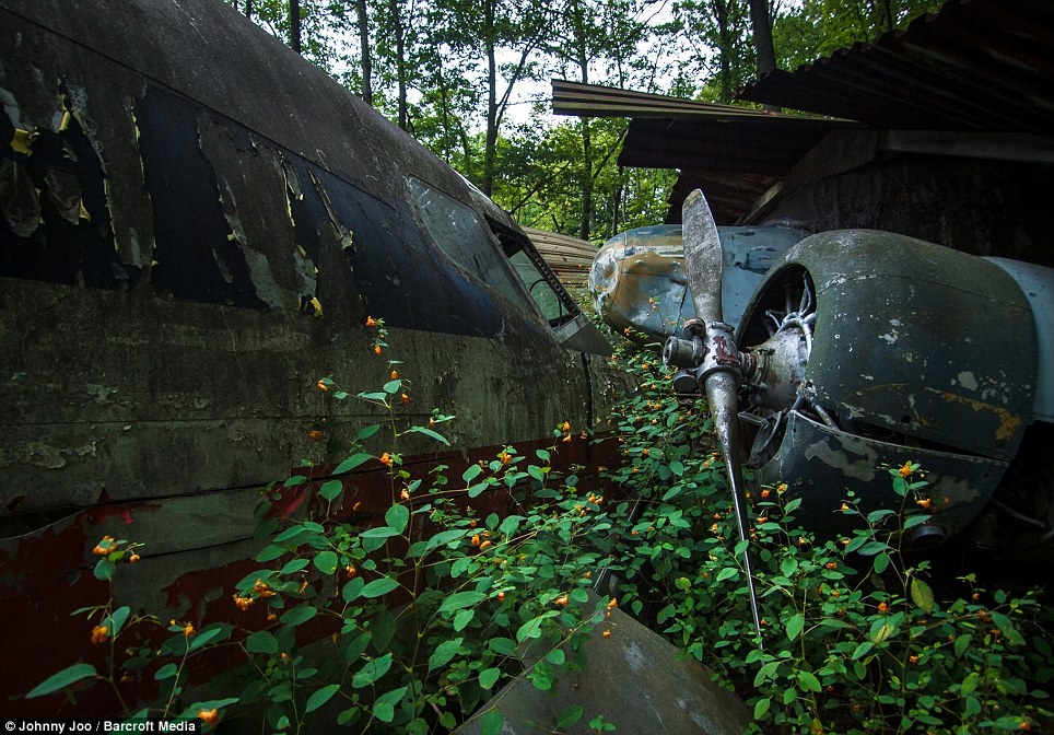 A Boeing 707 lies on left, while on the right a Beech 18 sits collecting rust. After Mr Soplata's death in 2010 the aviation graveyard was kept a secret by relatives fearing scrappers