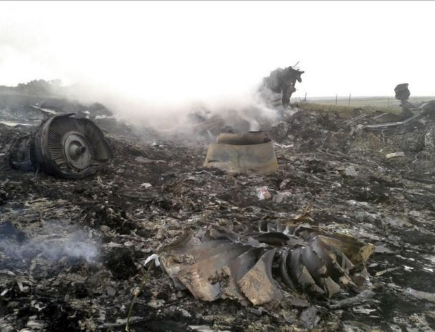 Malaysia Airlines Boeing 777 plane crash site in the settlement of Grabovo in the Donetsk region