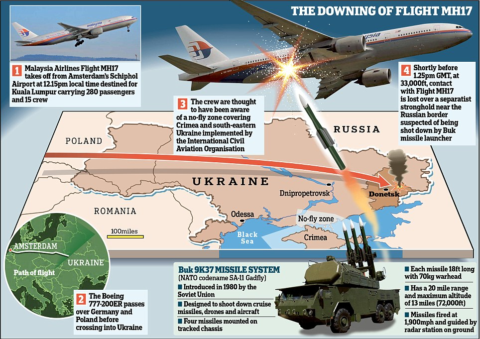 flight mh17 graphic