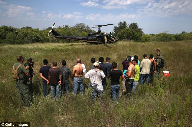 Coyotes and their prey: U.S. Border Patrol agents captured more than 4,000 illegal immigrants like these men in the month of June in the land near Falfurrias, Texas -- including hundreds of children