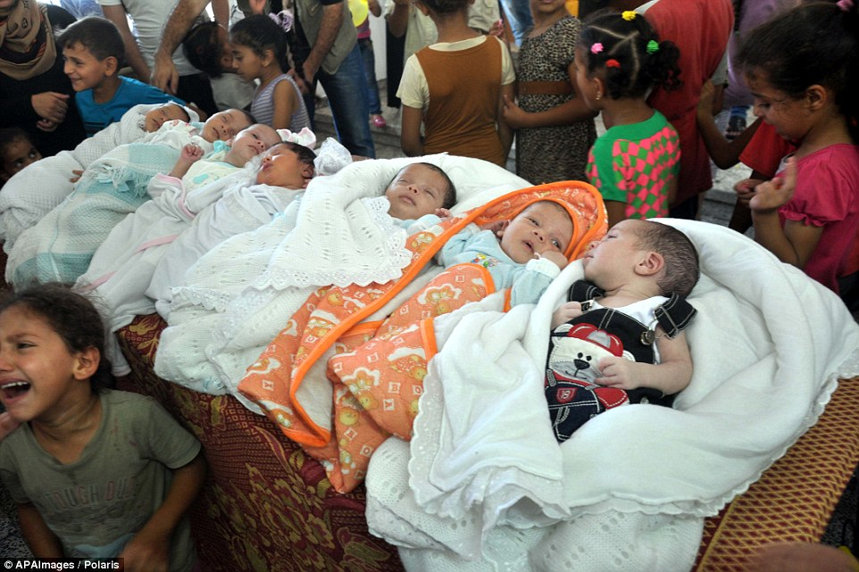 Tender moment: Sleeping soundly, these seven Palestinian babies - who were all born in shelters - were honoured at a ceremony held inside a United Nations-run school sheltering displaced Palestinians from the Israeli offensive