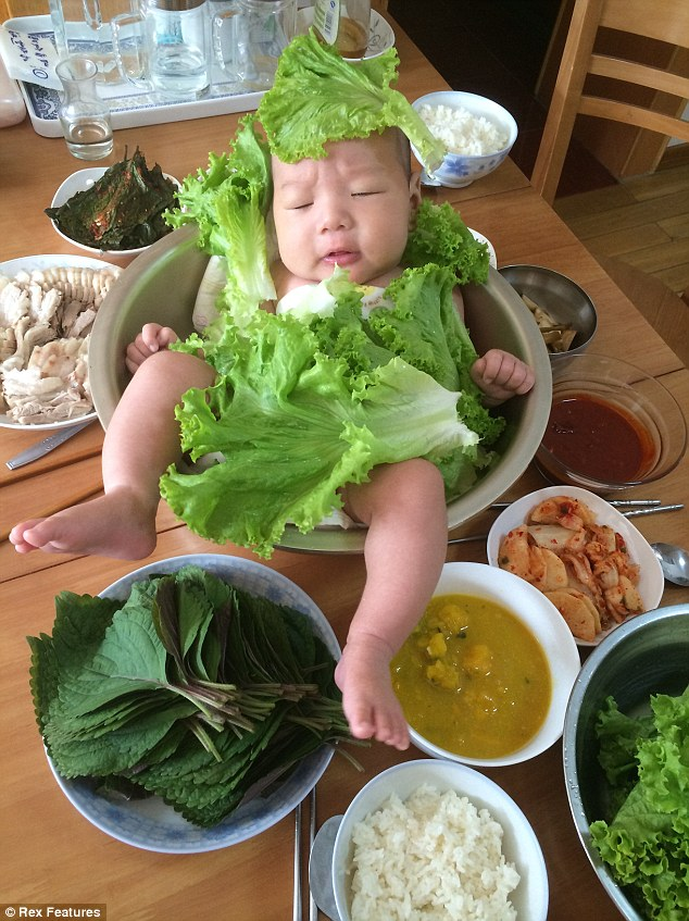 Romaine calm: The little boy appears to have got used enough to the salad bowl to take a nap in it