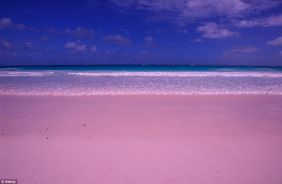 Pretty in pink: Harbour Islands in the Bahamas is famous for its pink sand beaches that stretch for several miles