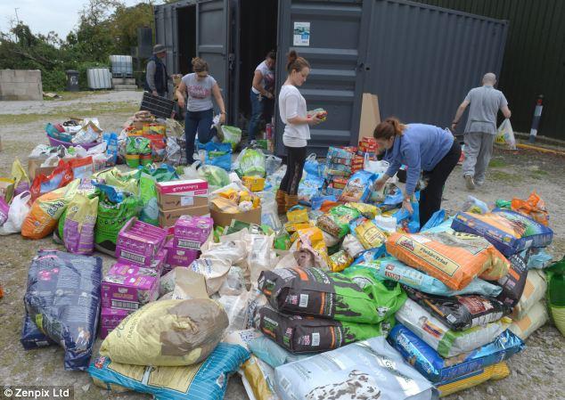 Teamwork: Volunteers sort through dog food that has been donated | ozara gossiip