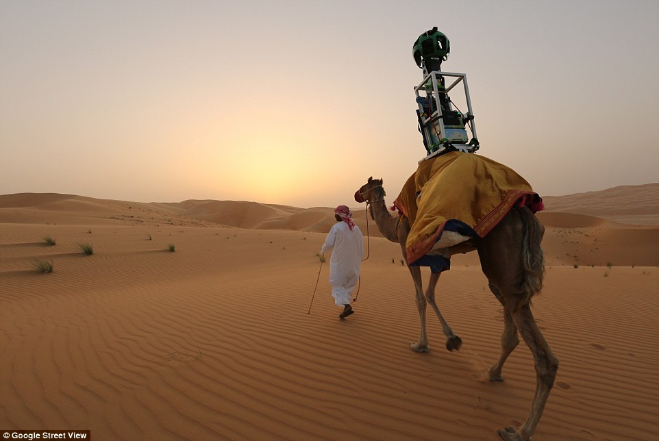 Google has strapped its Trekker camera to a camel (pictured) so that you can look across a vast expanse of desert dunes from the comfort of your sofa