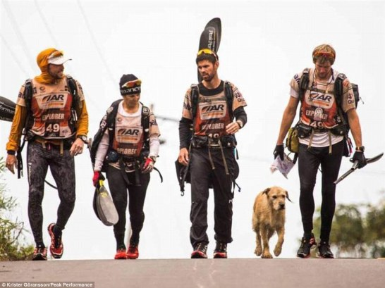 The fifth member: Team Peak Performance walk with stray dog Arthur during a stage of the 430-mile Adventure Racing World Championship. He followed the group of four during the grueling race