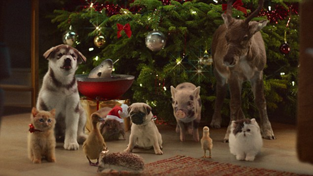 McVities Cute Christmas Advert Shows Kittens Piglet And