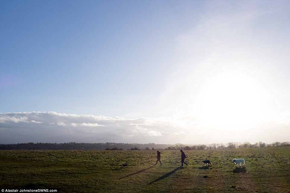 Icy blast: Severe weather warnings of snow and ice are in place for the north west of England, most of Scotland and Northern Ireland today, with forecasters warning of accumulations of between 5cm and 10cm. Pictured: Morning sunshine on Selsley Common in Gloucestershire