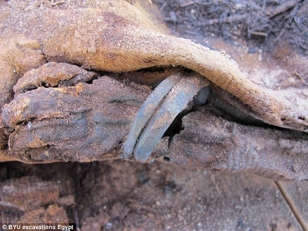 A mummified 18 month old girl with bracelets still on both arms was recently found at the Fag el-Gamous site