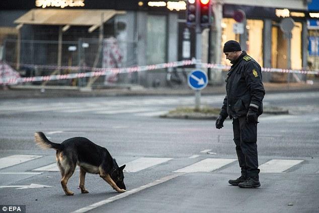 Un perro rastreador fue visto trabajando en una calle cerca de la sinagoga domingo por la mañana ya que la zona que rodea la sinagoga permaneció acordonada
