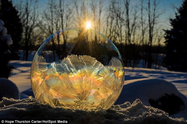 Los colores de la naturaleza: la luz del sol de oro hace que esta burbuja de jabón congelados se ven como un artefacto de valor incalculable