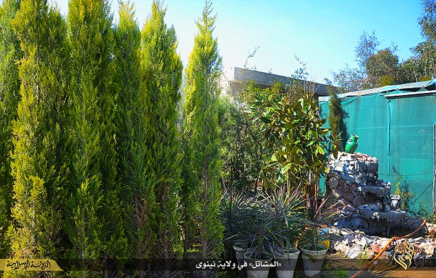 It is unclear when the nursery was opened but its dire shortage of customers suggests gardening might not as popular as ISIS had thought in Iraq.