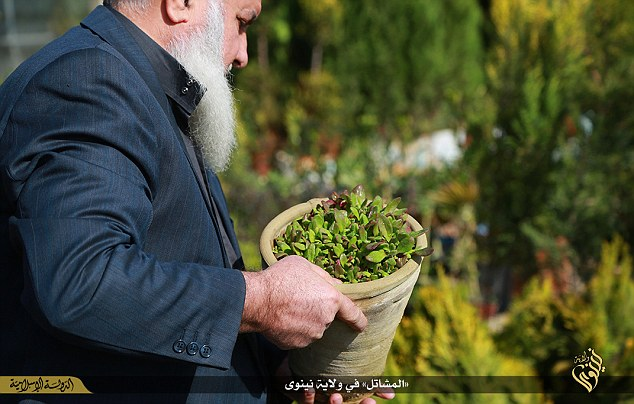 One grey bearded customer is shown inspecting a pot plant. He appears to be one of the only customers in the empty garden centre.