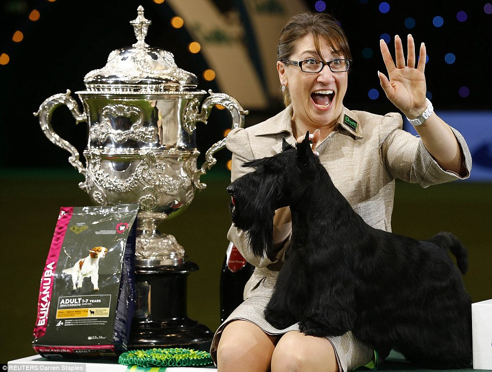 Crufts 2015 Sees Scottish Terrier Becomes First Since 1929