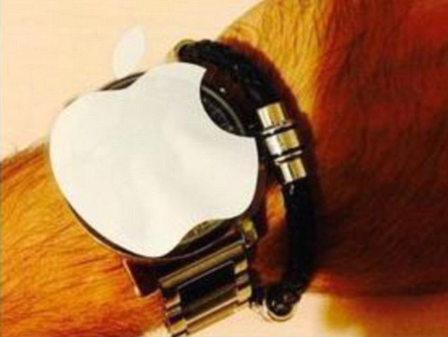 Apple Watch Hmm This Apple Tastes Funny Apple Watch Make A Meme