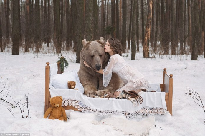 Bear hug: ModelMaria Sidorova is pictured kneeling on a single bed and wrapping her arms around Stephen the brown bear - in a forest outside Moscow