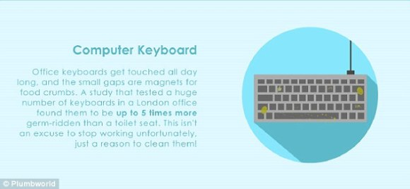 Computer keyboards contain up to five times more bacteria than a toilet seat.Previous studies have revealed 3,000 organisms per square inch on a keyboard or over 1,600 on a computer mouse